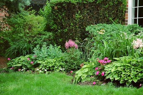 Места размещения цветов в саду