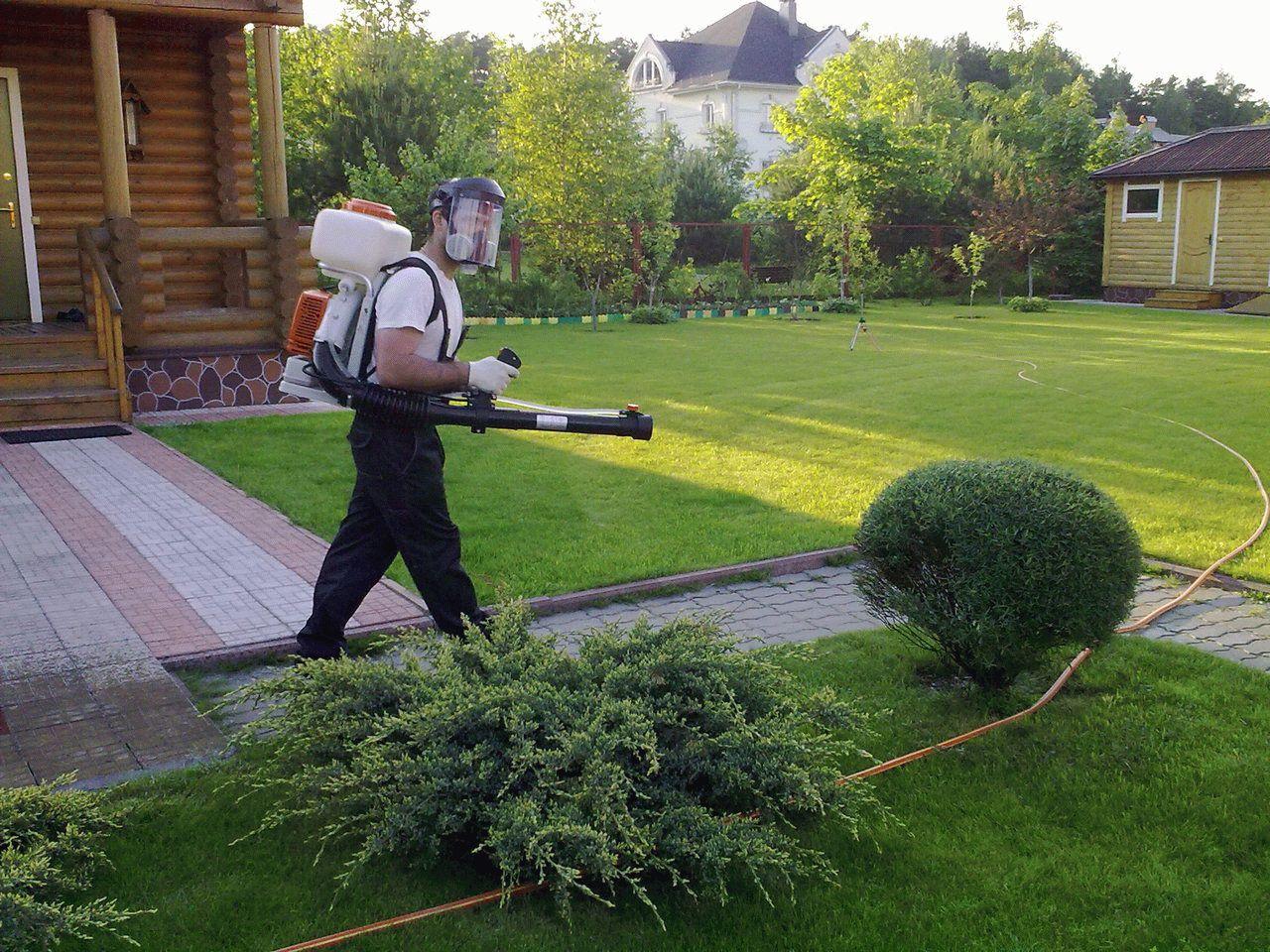 С садовником на лужайке 15 фотография
