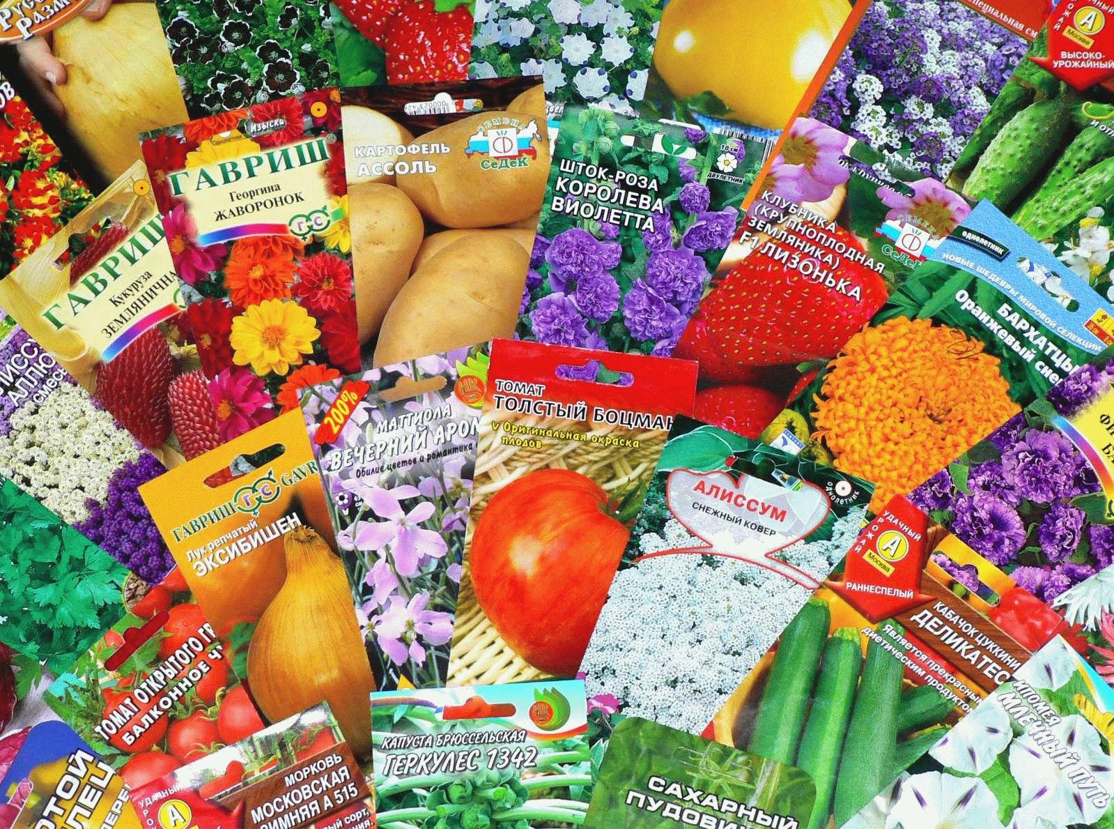 Продажа семян и рассады 225