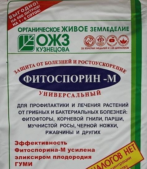 Фитоспорин инструкция по применению для смородины