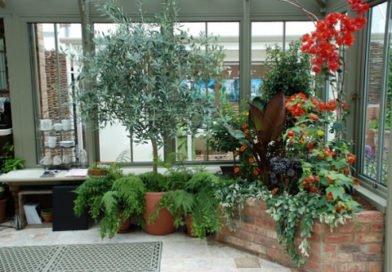 Зимние сады – дань моде или гениальная идея
