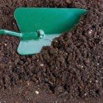 Поговорим о почве