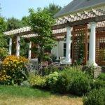 Пергола — то, что нужно для сада