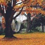 Работы в огороде, саду и цветнике в ноябре