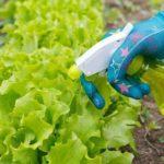 Биопрепараты  для растений