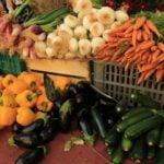 Чем болеют овощи?
