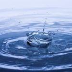 Готовим талую воду для полива растений
