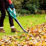 Садовый пылесос — как выбрать