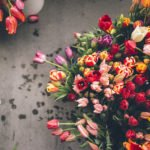 Тюльпан — цветок счастья