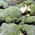 Брокколи – выращивание из семян рассадой и в открытом грунте